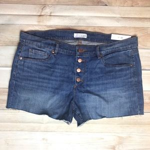 •LOFT• NWT High Rise Button Fly Frayed Jean Shorts